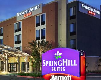 SpringHill Suites by Marriott Irvine John Wayne Airport/Orange County - Irvine - Bina