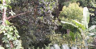 Pousada Pitanga - Vila do Abraao - Outdoor view