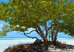 奧爾伯里庭苑酒店 - 基韋斯特酒店 - 西嶼 - 基韋斯特 - 海灘
