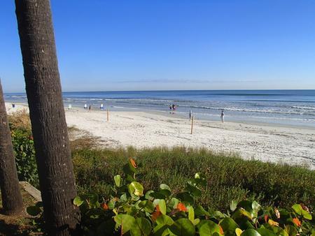 Flamingo Inn Beachfront - Daytona Beach - Strand