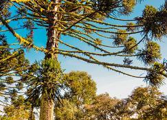 Hotel Fazenda Pedras Brancas - Lages - Outdoors view