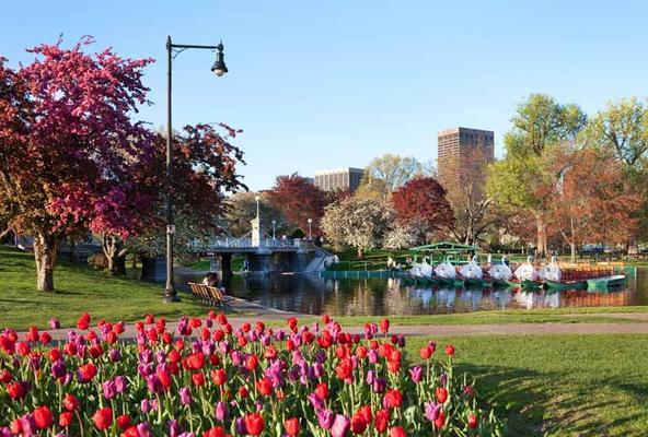 The Westin Copley Place, Boston - Бостон - Достопримечательности