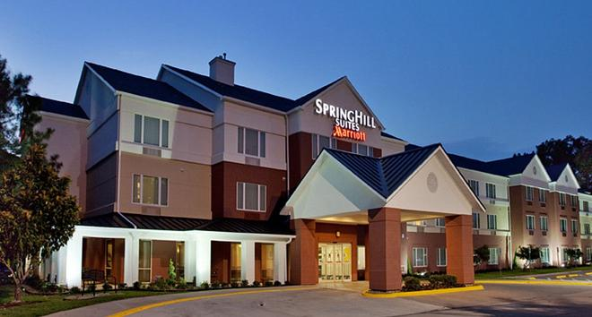 SpringHill Suites by Marriott Houston Brookhollow - Χιούστον - Κτίριο