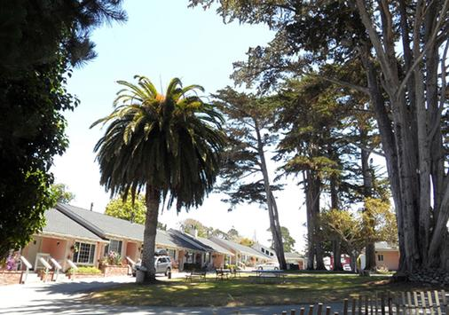 Butterfly Grove Inn - Pacific Grove - Outdoor view