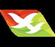 塞舌爾航空