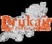 不丹皇家航空