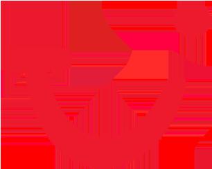 TUI fly
