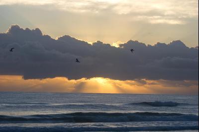 Surfside Beach hotels