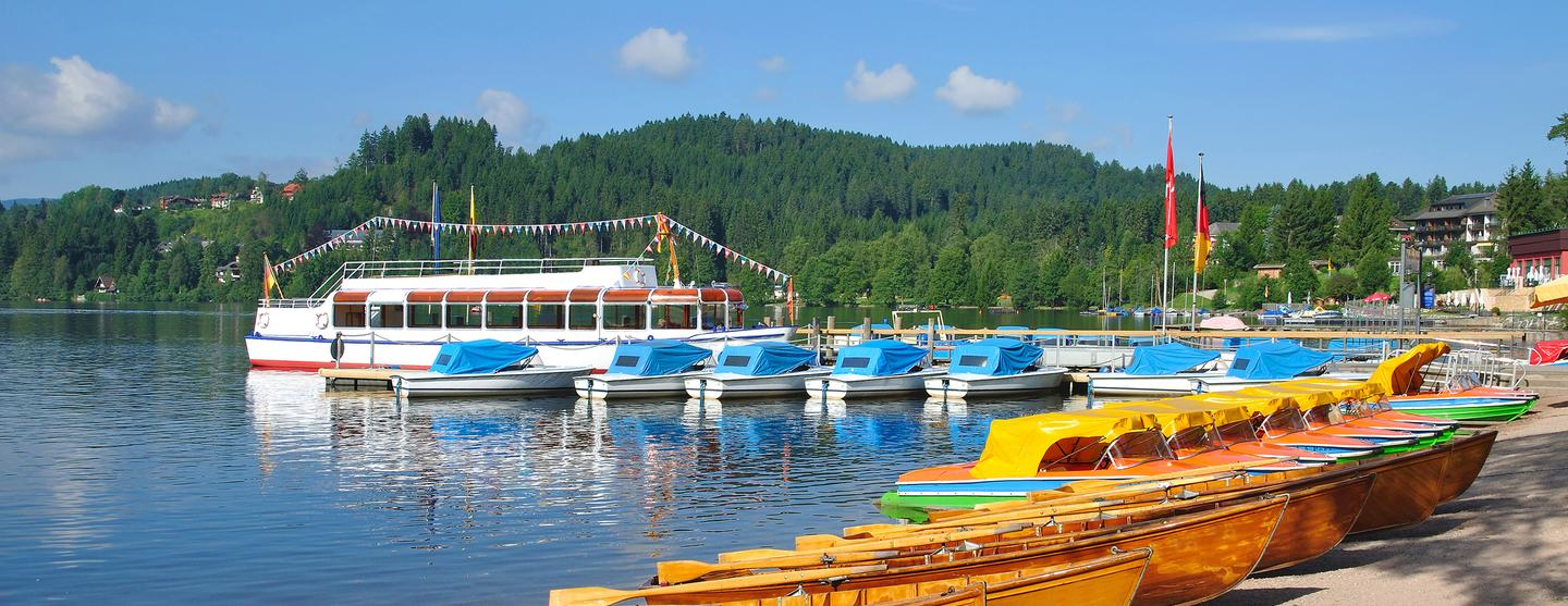 Titisee-Neustadt Pet Friendly Hotels